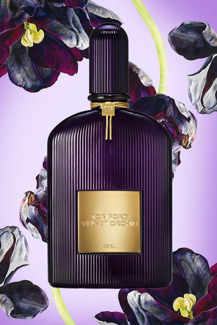 Tom Ford Velvet Orchid Eau De Parfum 100ml – Mỹ phẩm hàng hiệu cao ...